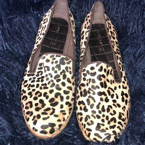 Cheetah Sperry Shoes